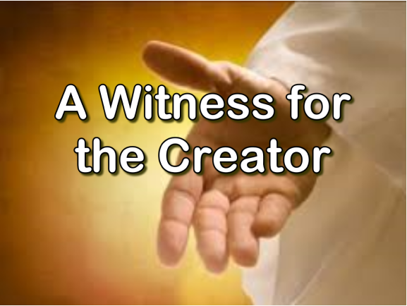 A Witness for the Creator